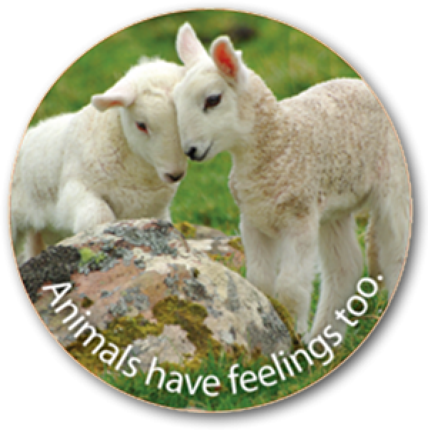 ANIMALS FEEL - Sticker