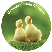 COMPASSIONATE CHOICES - Sticker